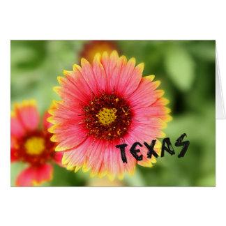 Texas-Wildblume Mitteilungskarte
