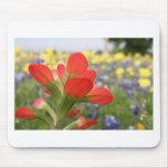 Texas-Wildblumen Mauspad