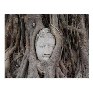 Thailand-Kopf von Buddha umgab durch Bäume Postkarte