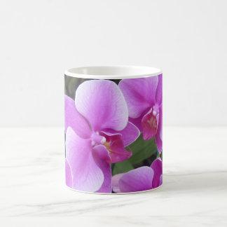 Thailändische Orchideenanzeige Kaffeetasse