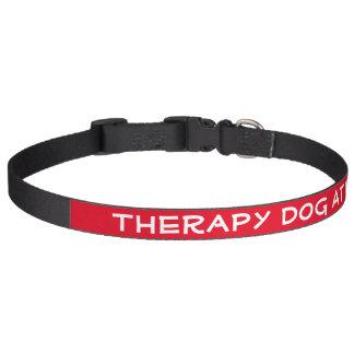 Therapie-Hund bei der Arbeit (groß) Haustierhalsband