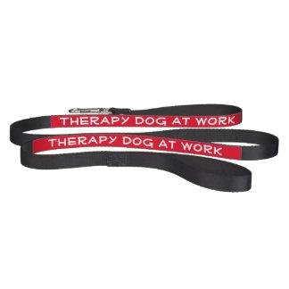 Therapie-Hund bei der Arbeit (Leine) Leine