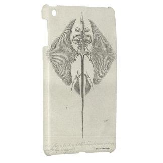 Thornback Skelett iPad Mini Hülle