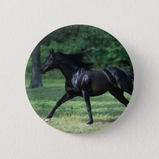 Thoroughbred-Betrieb Runder Button 5,7 Cm