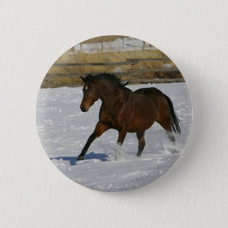 Thoroughbred-Pferd, das in den Schnee läuft Runder Button 5,7 Cm