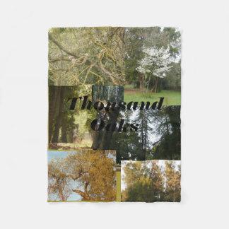 Thousand Oaks landschaftlich mit Eichen und Fleecedecke