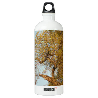 Thousand- Oakspark, San Jose, Kalifornien, alter Aluminiumwasserflasche
