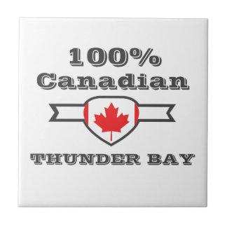 Thunder Bay 100% Fliese