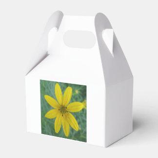 Tickseed Coreopsis-Gelb-Garten-Blume Geschenkschachtel