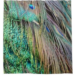 Tiefgrüne und TAN-Pfau-Federn Duschvorhang