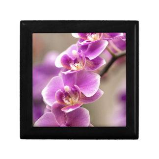 Tiefrosa Phalaenopsis-Orchideen-Blumen-Kette Erinnerungskiste