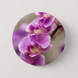 Tiefrosa Phalaenopsis-Orchideen-Blumen-Kette Runder Button 5,7 Cm