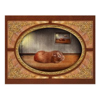 Tier - das Meerschweinchen Postkarte