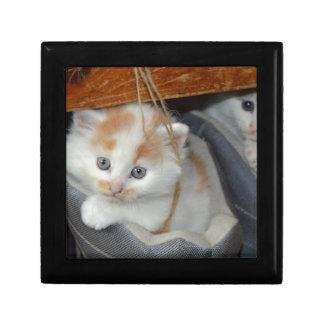 Tier-Pets niedlicher KätzchenKitty Katzen Geschenkbox