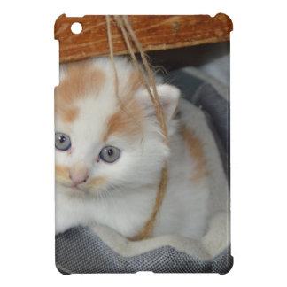 Tier-Pets niedlicher KätzchenKitty Katzen iPad Mini Hülle