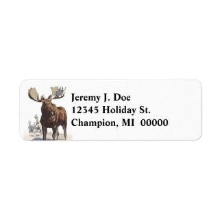 Tier-Stier-Elch-Winter-Rücksendeadressen-Aufkleber