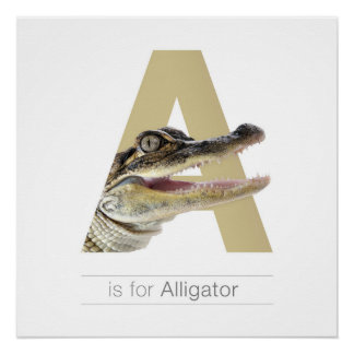 Tieralphabet-Kinderzimmer-Wand Art. A - Alligator Poster