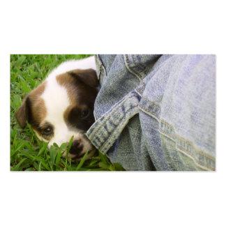 Tierarzt-u. Hundehütten-Geschäfts-Karte - Jack Rus Visitenkarte