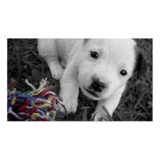 Tierarzt-u. Hundehütten-Geschäfts-Karte - Jack Visitenkarten