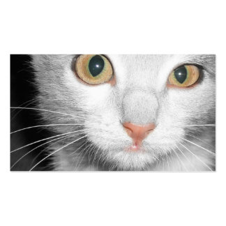 Tierarzt-u. Hundehütten-Visitenkarte - graues Kätz