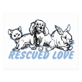 Tiere retteten Liebe Postkarte