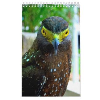 Tiere und Haustiere Abreißkalender