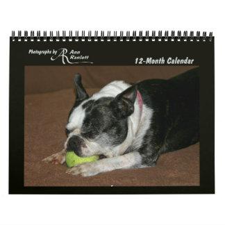 TierFotos - 12-Monat Kalender
