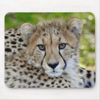 TierMousepad Reihe - Baby-Gepard