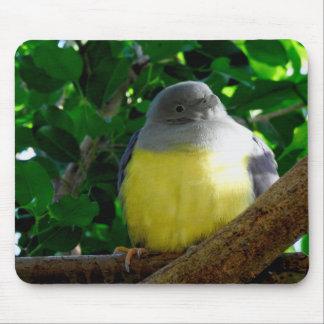 TierMousepad Reihe - molliger Vogel Mousepad