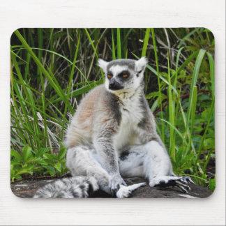 TierMousepad Reihe - Ring-Angebundener Lemur Mousepad