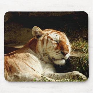TierMousepad Reihe - Schlafentiger