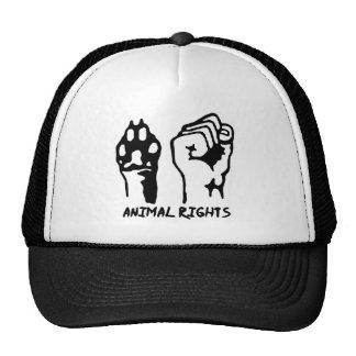 Tierrechtkappe Kult Cap
