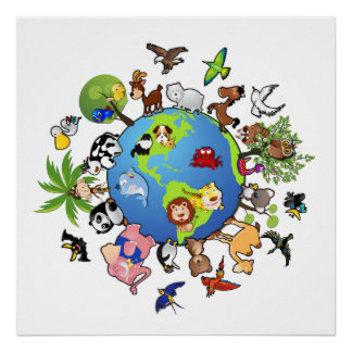 Tierreich: Tiere auf der ganzen Welt Poster