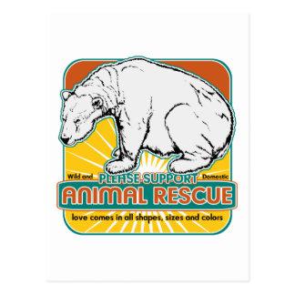 Tierrettungs-Eisbär Postkarte