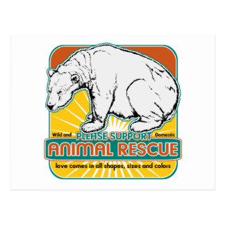 Tierrettungs-Eisbär Postkarten