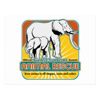 Tierrettungs-Elefanten Postkarten