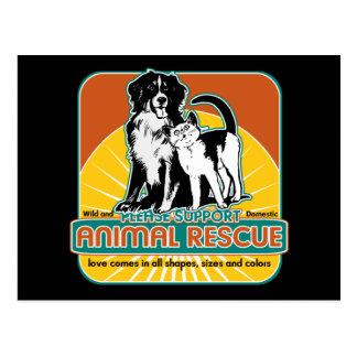 Tierrettungs-Hund und Katze Postkarte