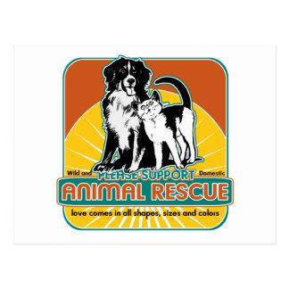Tierrettungs-Hund und Katze Postkarten