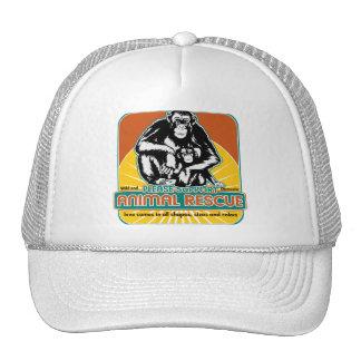 Tierrettungs-Schimpanse Kappen