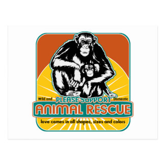 Tierrettungs-Schimpanse Postkarte