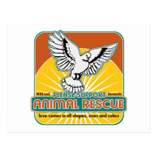 Tierrettungs-Vogel Postkarten