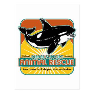 Tierrettungs-Wal Postkarten