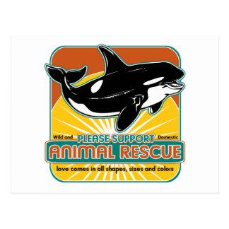 Tierrettungs-Wal Postkarte