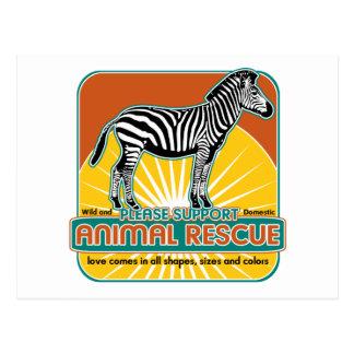 TierrettungZebra Postkarten
