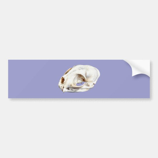 Tierschädel animal skull autoaufkleber