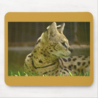 TierServal Mousepad