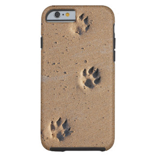 Tiertatzendrucke im Sand Tough iPhone 6 Hülle