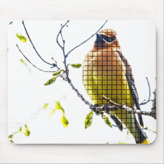 Tiervogel-ZederWaxwing Mousepad