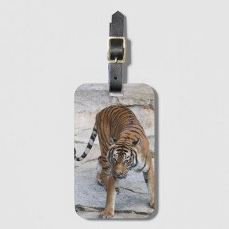 Tiger 1216 AJ Kofferanhänger