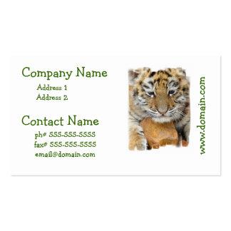 tiger-19 visitenkarten